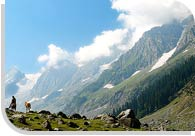 Gulmarg Tour, Jammu And Kashmir