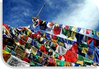 Prayer Flag, Ladakh